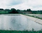 zapory-wodne-1